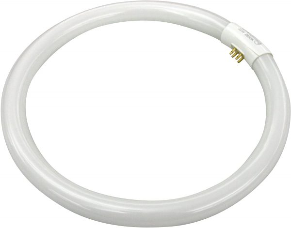 T6 White Circline Bulb 32Watt